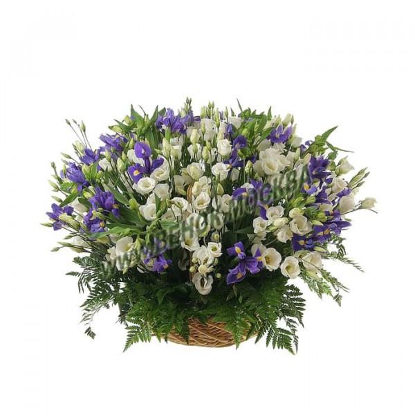 корзина из живых цветов КРЖ-29