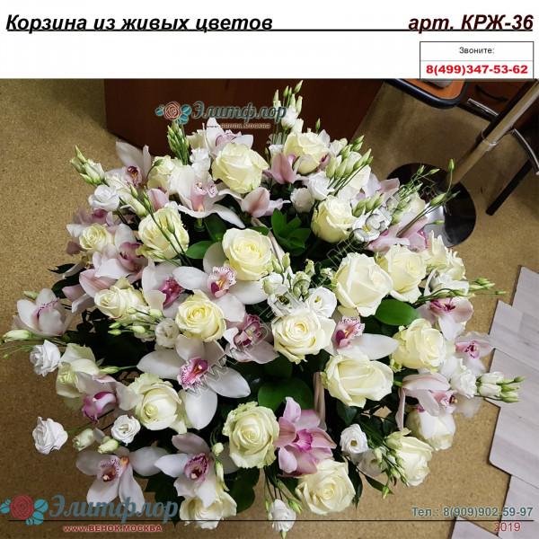 корзина из живых цветов КРЖ-36
