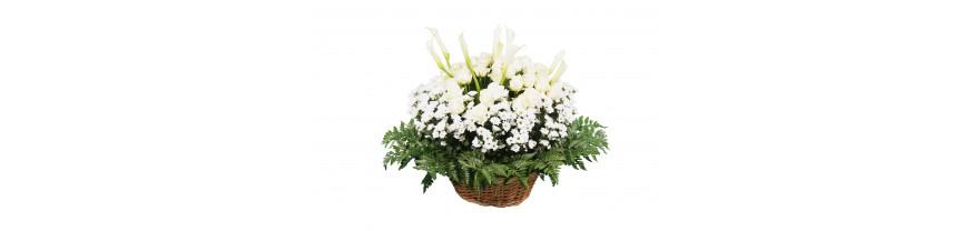 Траурные ритуальные корзины из живых цветов