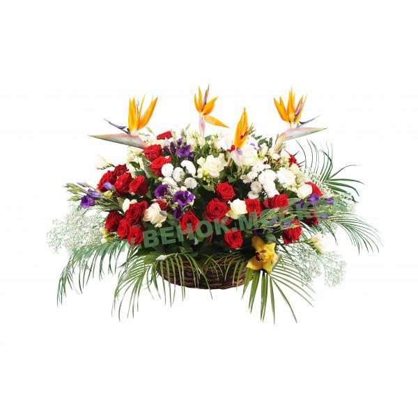 корзина из живых цветов КРЖ-03