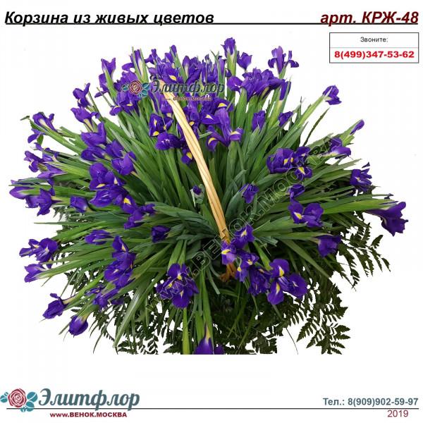 Корзина из живых цветов КРЖ-48